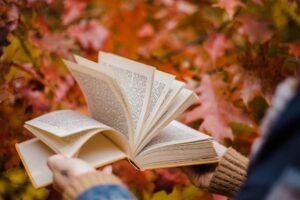 विद्या पर संस्कृत श्लोक हिन्दी में